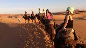 Tour desierto